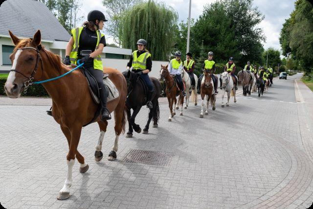 Paardrijtochten Ardennen