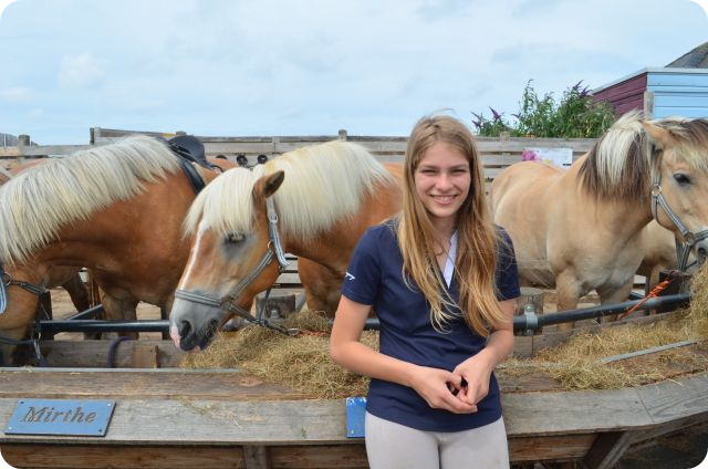 Paardrijden A-brevet